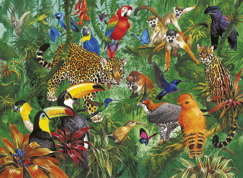 RB13003-0_Wild_Jungle_1_large