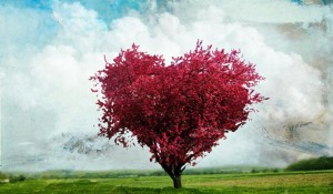 Fantasy-And-Beautiful-Tree-Wallpapers-02